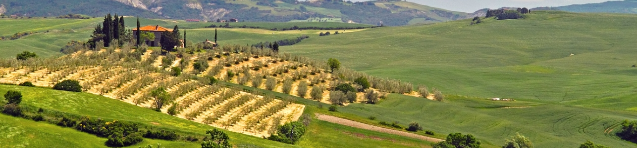 Val-d-orcia3