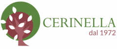 Cerinella - Catering, Wedding & Event planning