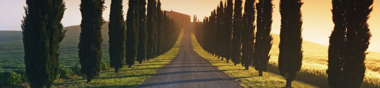 val-d-orcia-siena-1600x900