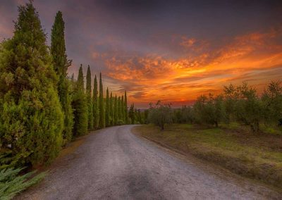 agriturismo_pienza_wedding_location_val d'orcia_tuscany_cerinella_wedding planner (6)