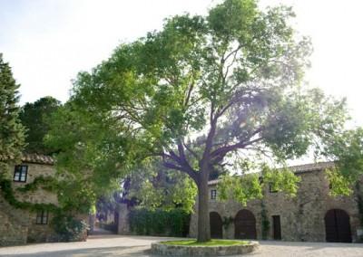 borgo_dimora_storica_valdorcia (1)