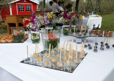 finger food wedding buffet