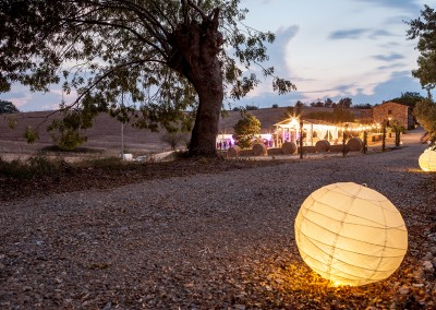 wedding_tuscany_cerinella_lighting