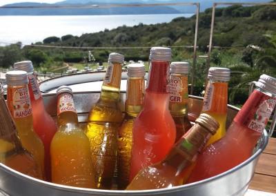 country_aperitif_weddingintuscany_organic_drinks_cerinella_catering