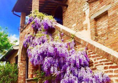 wedding_venue_montepulciano_realais_countryhouse_springtime