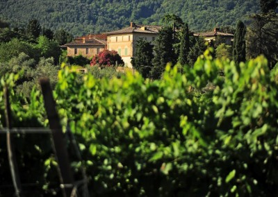 historic_wedding_venue_dimora_storica_siena_monteriggioni_val_elsa_chianti_cerinella_weddingplanner_view_vineyards