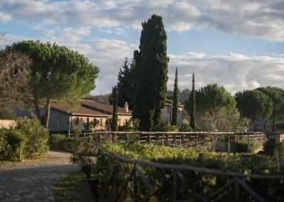 Borgo in Maremma, Scansano