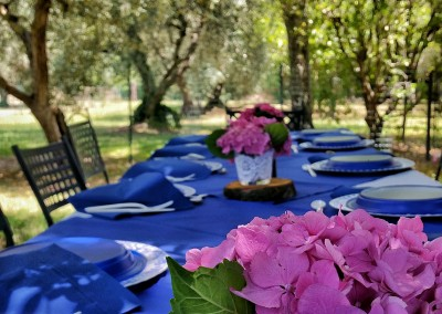 agriturismo_tuscany_cerinella_wedding_dinner_olivegrove