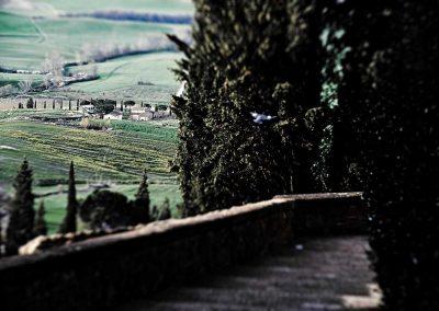 agriturismo_casale_pienza_val_d'orcia (5)