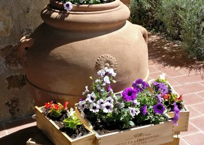 antica casale, agriturismo & winery, maremma (18)