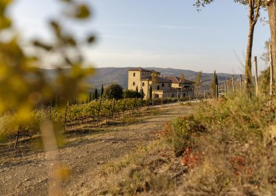 wine farm_wedding location_tuscany_cerinella_eventplanner (5)